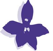 Logo_hoher_stein
